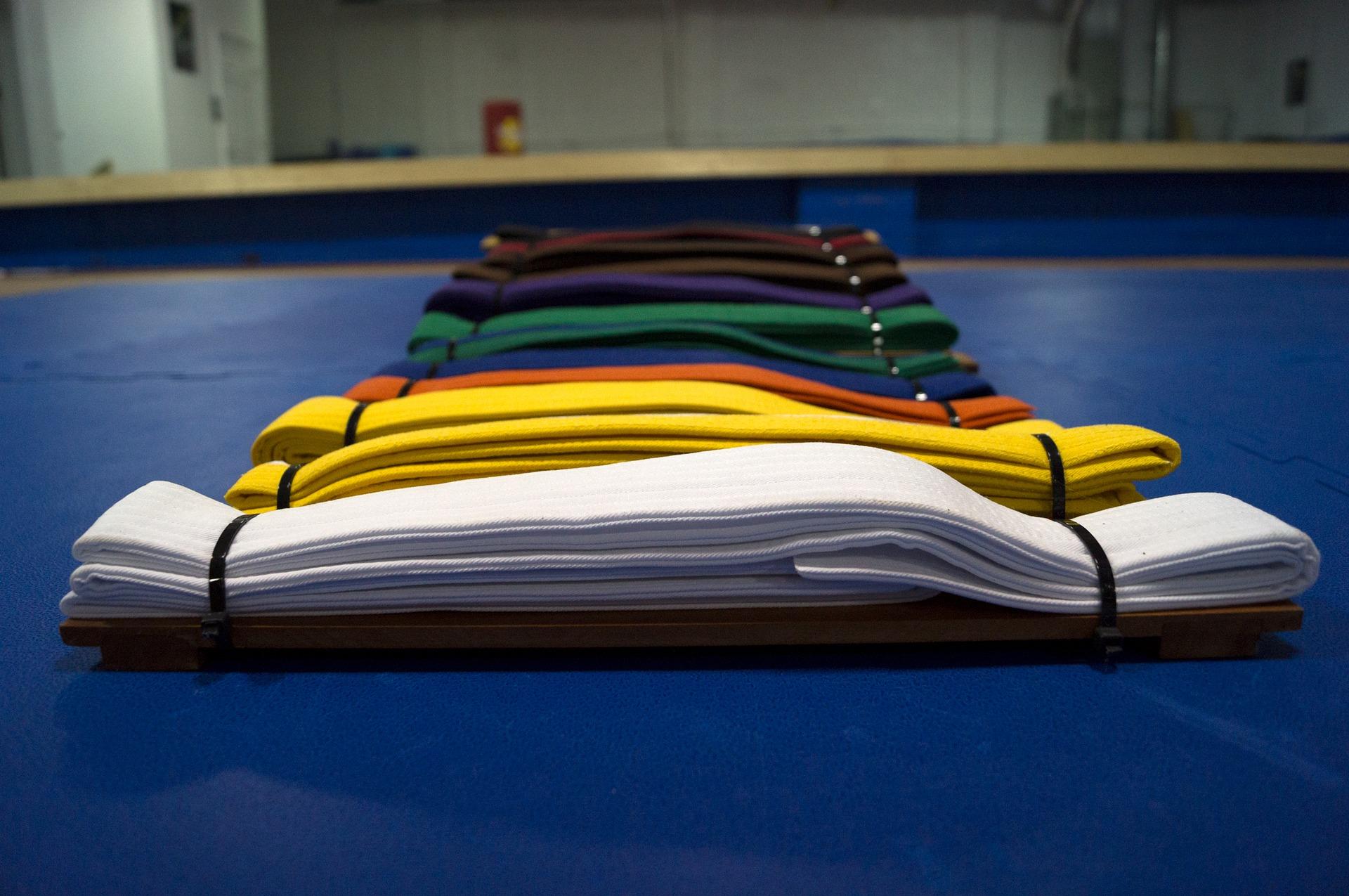 Shogan Dojo students compete Western Canadian Martial Arts
